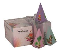 McCoy Teas Pyramid Tea Box 12x2g 4x4x2g WELLNESS